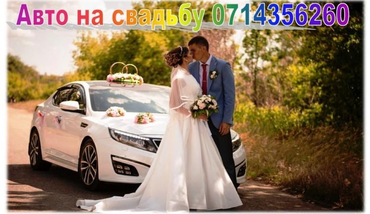 Аренда и прокат авто на свадьбу свадебные украшения
